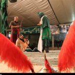 گذری بر تعزیهخوانی پایان ماه صفر در «امامزاده نرمی»؛ اینجا جوانان «ولایتپذیری» را تمرین میکنند