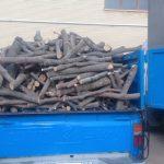 کشف ۸۰۰ کیلوگرم چوب بلوط غیر مجاز در برخوار